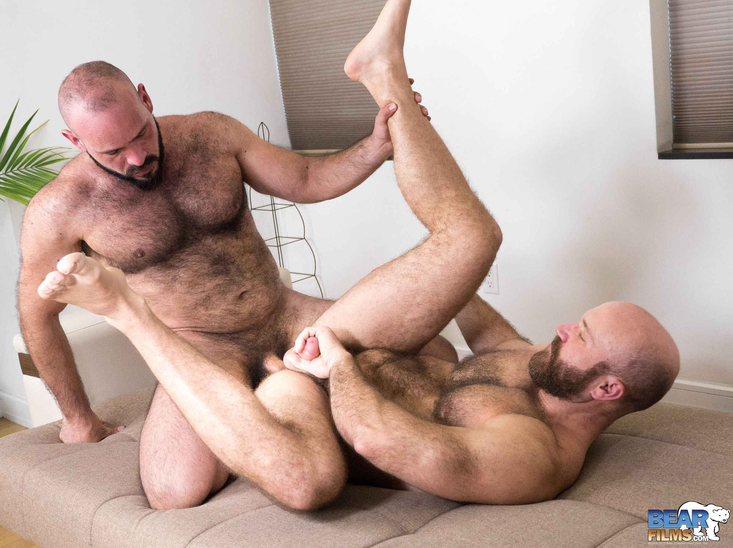 Gay bear furry porn