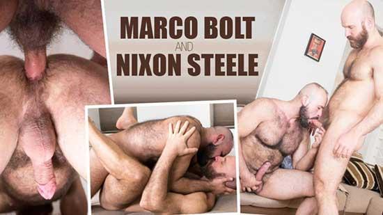 Nixon steele porno gay Alphamales Marco Bolt And Nixon Steele Gay Porn Video